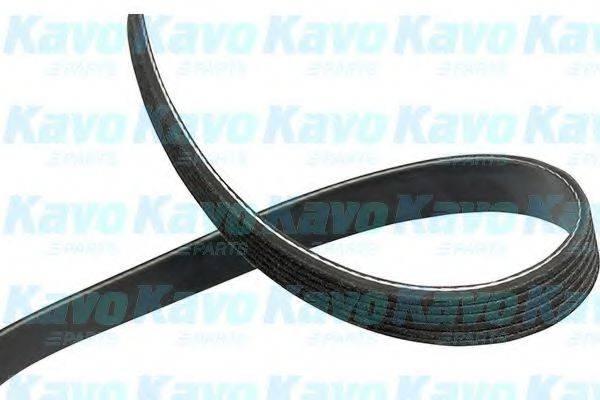 KAVO PARTS DMV9087 Поликлиновой ремень
