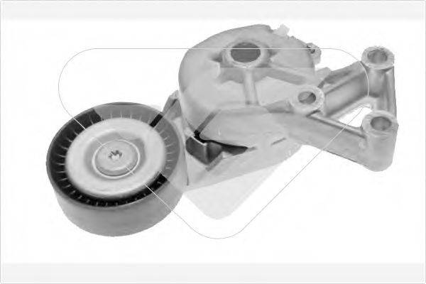 HUTCHINSON T0038 Натяжной ролик, поликлиновой  ремень