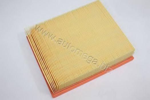 AUTOMEGA 301330843058 Воздушный фильтр