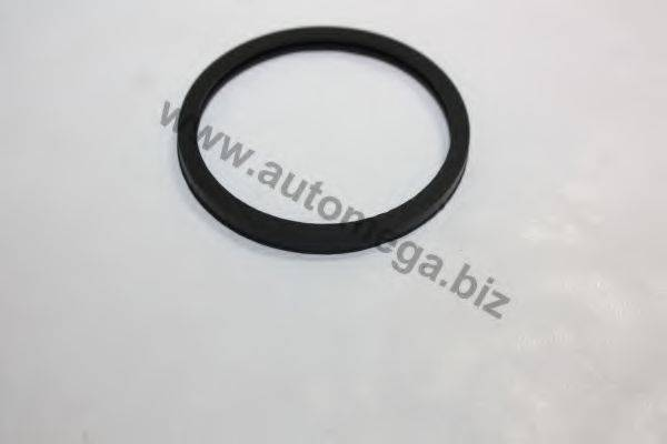 AUTOMEGA 1013380215 Прокладка, термостат